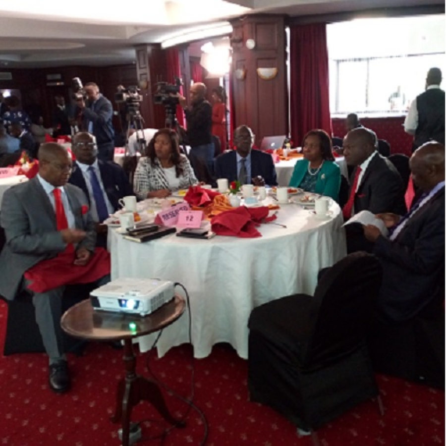 Other dignitaries in the energy sector present during EJEAIVLAUNCH