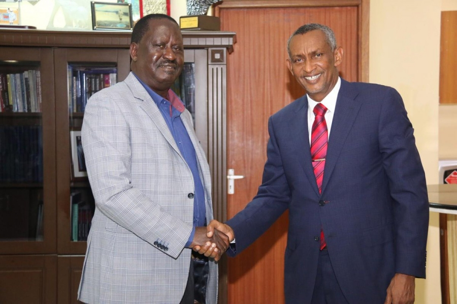 Board Chairman and @IGADSecretariat Executive Secretary @Amb_Mahboub when he paid @RailaOdinga a courtesy call at Capitol Hill Square.